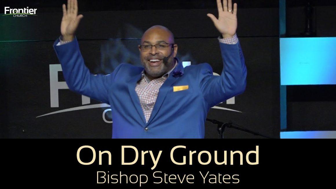 On Dry Ground | New Year's Stream