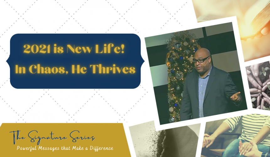 2021 is New Life! In Chaos, He Thrives – The Signature Series