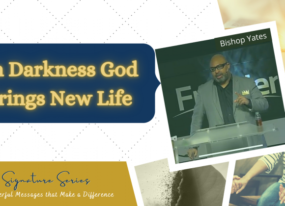 In Darkness God brings New Life